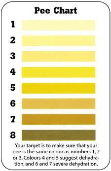 pee test chart