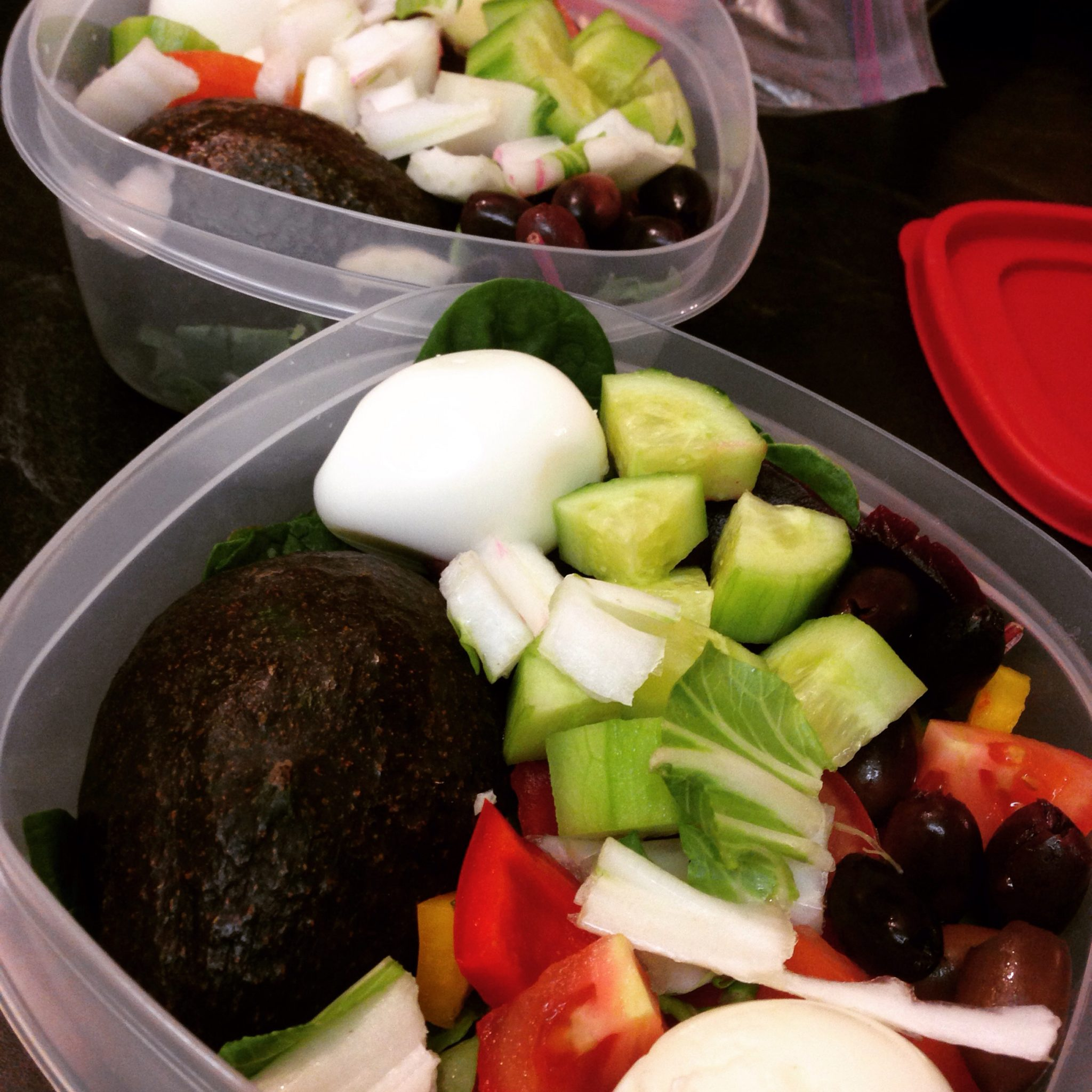 pre-packed salads with protein, fat, and carbs